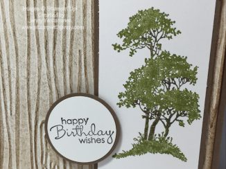 Masculine birthday card using Serene Silhouettes